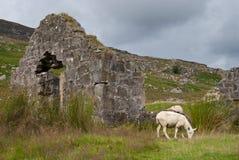 Ruinas viejas de la piedra Foto de archivo libre de regalías