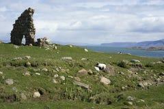 Ruinas y paisaje marino de Iona Abbey Fotos de archivo
