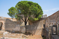 Ruine au couvent du Christ Images stock