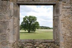 Ruine avec une vue Photos libres de droits