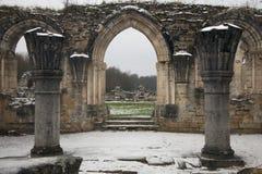 Ruine of Carthusian monastery Royalty Free Stock Photos