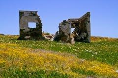 Ruine dans le pré Photo libre de droits