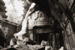 Ruine de émiettage de Ta Prohm Images stock