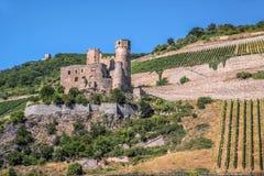 Ruine des Schlosses Ehrenfels Stockbild