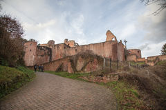 Ruine Hardenburg Stock Photography