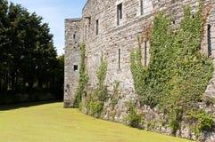 Ruine historique d'un château enrichi Image stock