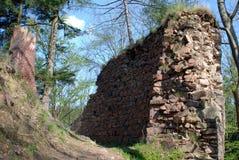 Ruine im Wald Lizenzfreies Stockfoto