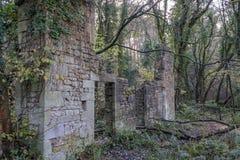 Ruine im Wald stockbild