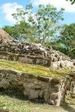 Ruine maya dans Cozumel, Mexique image libre de droits