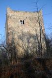 Ruine moyenne de château de Wartenberg photo libre de droits