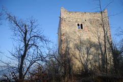 Ruine moyenne de château de Wartenberg photographie stock