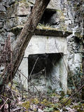 Ruined abandonou a casa de pedra com árvores Foto de Stock Royalty Free