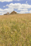 Ruined adobe pigeon house between a cereal field and a cloudy bl. Ruined adobe pigeon house between a barley field close to harvest and a cloudy blue sky in Stock Photo