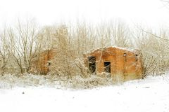 Ruined brick house. In the winter forest Royalty Free Stock Images