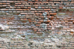 Ruined brick wall Royalty Free Stock Image