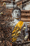 Ruined Buddha Sculpture (Ayutthaya, Thailand). The ruined Buddha Sculpture there is unique of Ayutthaya art and this is heritage of Thailand Stock Photos