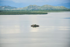 The ruined building on the island. The ruined building on the small island with calm water and mountaines, Skadar lake at Montenegro Royalty Free Stock Images