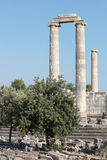 Ruined columns of ancient temple Stock Photography
