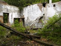 Ruined house. Interior of the ruined house Royalty Free Stock Photos