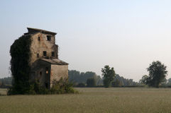 Ruined house in a field. Ruined house in the middle of a field in Italy Royalty Free Stock Images