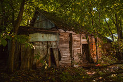 A ruined house in forest. A very old ruined house in forest Stock Photo
