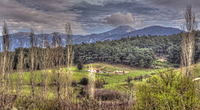 Ruined House. HDR image of ruined house in the pasture with poplar trees Royalty Free Stock Images