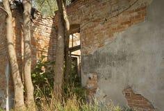 Ruined house Stock Photo