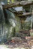 Ruined house. Tap water ruins of a house in the woods Stock Photography