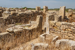Ruined houses in the ancient city of Selinunte, Sicily Stock Photos