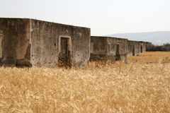 Ruined Houses in Wheat Field Stock Image