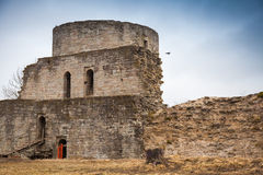 Ruined Koporye Fortress, Russia Stock Photo
