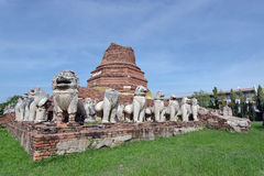 Ruined lion statue around damaged pagoda in Ayutthaya Thailand. Ruined lion statue around damaged pagoda in Wat Tam Migarat (Local name of Thai temple) Ayutthaya Royalty Free Stock Image