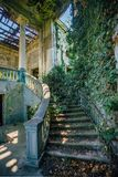 Ruined mansion interior overgrown by plants Overgrown by ivy spiral staircase and column. Nature and abandoned architecture, green post-apocalyptic concept stock image