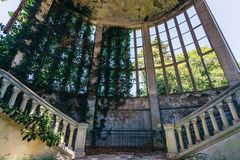 Ruined mansion interior overgrown by plants Overgrown by ivy windows and old staircase. stock images