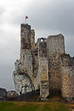 Ruined medieval castle with tower in Mirow Royalty Free Stock Photography