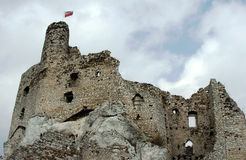 Ruined medieval castle with tower in Mirow Royalty Free Stock Image