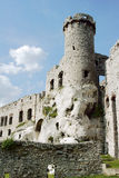 Ruined medieval castle with tower in Ogrodzieniec Royalty Free Stock Image