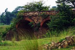 A ruined old Bridge. And A victory of nature over this concrete ruined bridge Royalty Free Stock Images
