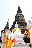 Ruined Old Temple of Ayutthaya, Thailand, Stock Images