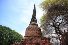 Ruined Old Temple, Ayutthaya, Thailand, Royalty Free Stock Photography
