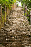Ruined stairs Stock Images