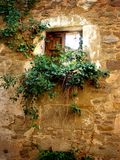 Ruined stone window in Ruesta, Huesca. Ruined stone window invaded by green vines in the abandoned village of Ruesta, Huesca Royalty Free Stock Photo
