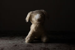 Ruined Stuffed Dog Royalty Free Stock Photography