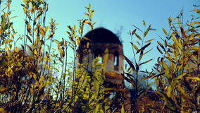 Ruined temple in fall through grass stock video footage