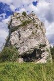 Ruinen auf dem Felsen in Ryczow Stockbilder