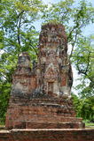 Ruinen bei Wat Maha That in Ayutthaya Stockfoto