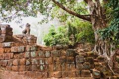 Ruinen der alten Khmerzivilisation, Angkor Wat, Kambodscha Stockfotos