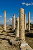 Ruinen der Decapolis Stadt Beth Shean in Israel lizenzfreie stockbilder