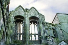 Ruinen der Holyrood-Abtei Stockbild
