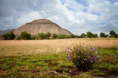 Ruinen der Pyramide des Sun in der alten Mayastadt von Teo Lizenzfreie Stockfotos